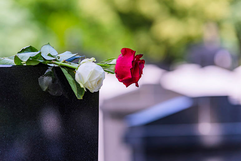 Image of a red and white rose laid on top of a tombstone at a graveyard